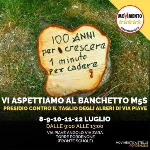 Read more about the article PRESIDIO CONTRO IL TAGLIO DEGLI ALBERI DI VIA PIAVE